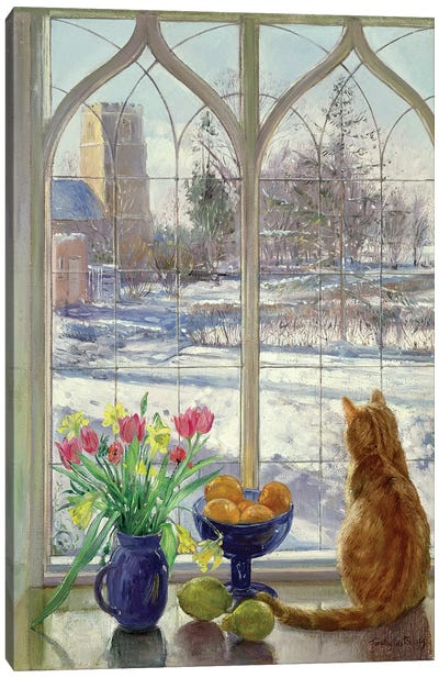 Snow Shadows And Cat Canvas Art Print