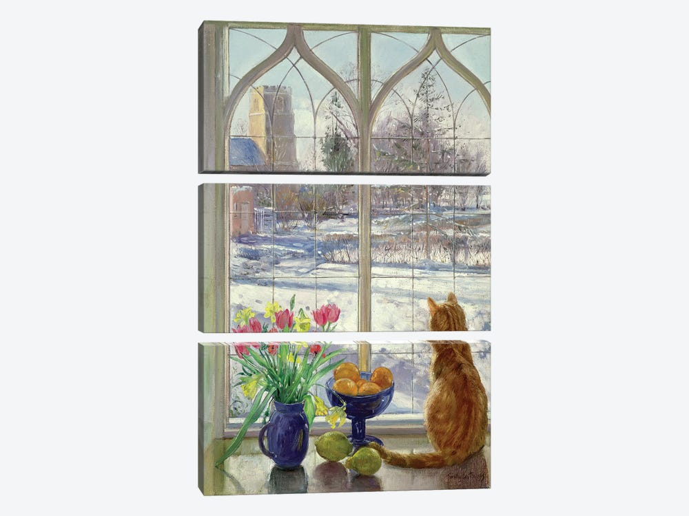 Snow Shadows And Cat by Timothy Easton 3-piece Canvas Art