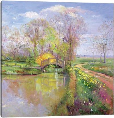 Spring Bridge Canvas Art Print