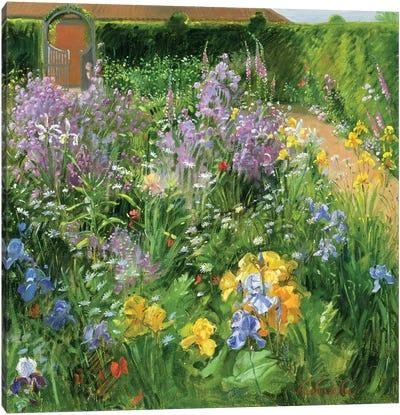 Sweet Rocket, Foxgloves And Irises Canvas Art Print