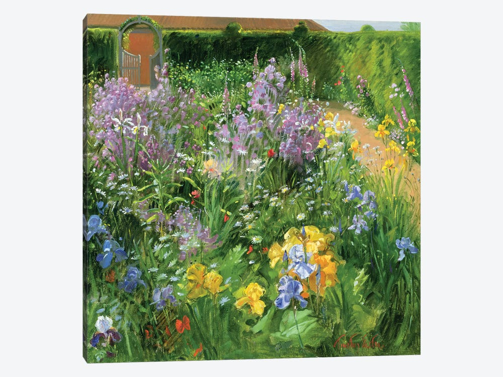 Sweet Rocket, Foxgloves And Irises by Timothy Easton 1-piece Canvas Art