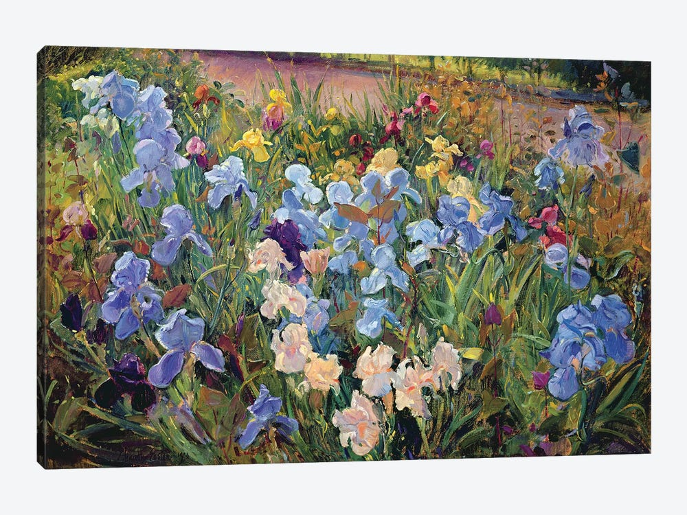 The Iris Bed, 1993 by Timothy Easton 1-piece Art Print