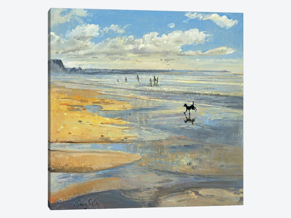 The Little Acrobat by Timothy Easton 1-piece Canvas Wall Art