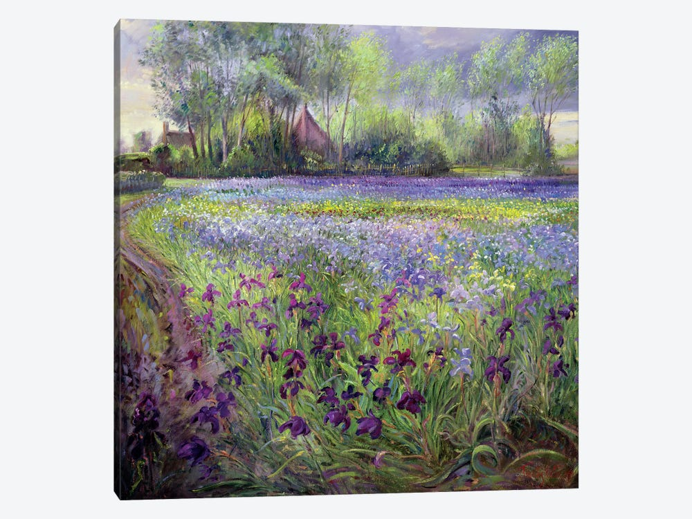 Trackway Past The Iris Field, 1991 by Timothy Easton 1-piece Canvas Artwork