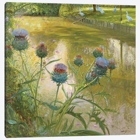 Cardoons Against The Moat Canvas Print #EST32} by Timothy Easton Art Print