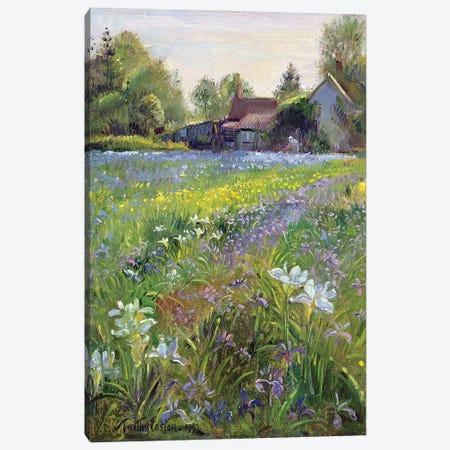 Dwarf Irises And Cottage, 1993 Canvas Print #EST34} by Timothy Easton Canvas Artwork