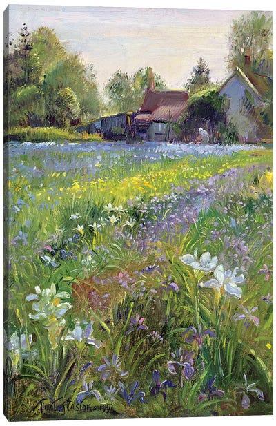 Dwarf Irises And Cottage, 1993 Canvas Art Print