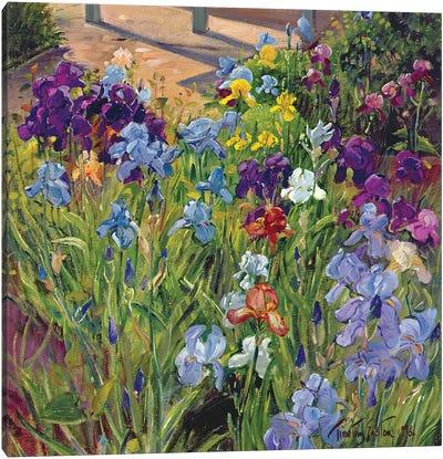 Irises And Summer House Shadows, 1996 Canvas Art Print