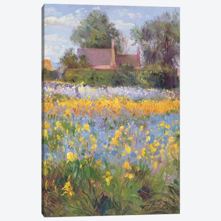 The Enclosed Cottages In The Iris Field Canvas Print #EST49} by Timothy Easton Canvas Art