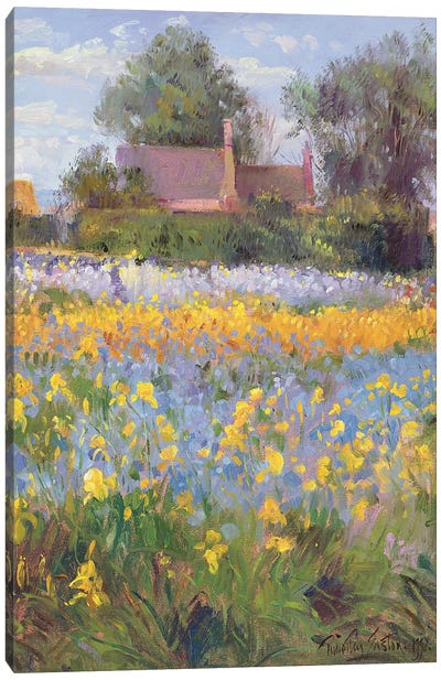 The Enclosed Cottages In The Iris Field Canvas Art Print