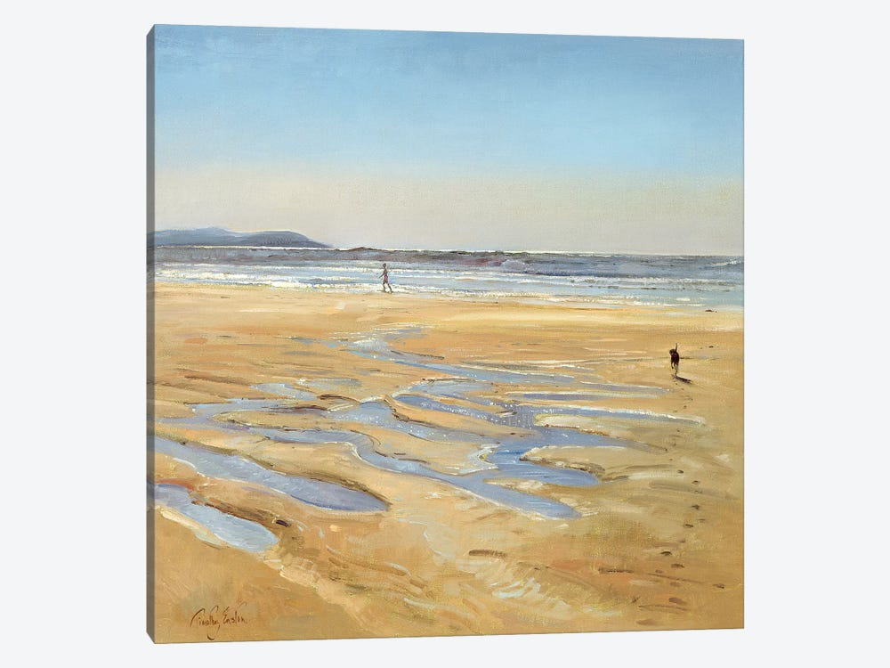 Beach Strollers by Timothy Easton 1-piece Canvas Wall Art