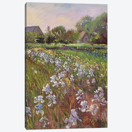White Irises And Farmstead Canvas Print #EST56} by Timothy Easton Canvas Wall Art