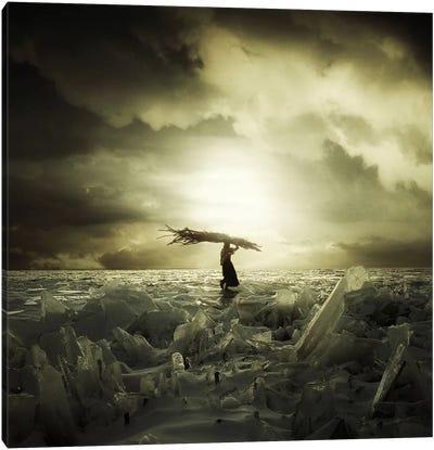 Frozen Nation Canvas Print #ESV19