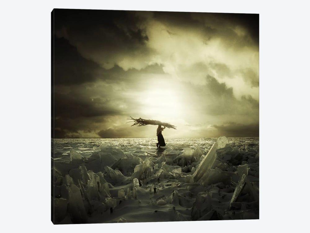 Frozen Nation by Evgenij Soloviev 1-piece Canvas Art Print