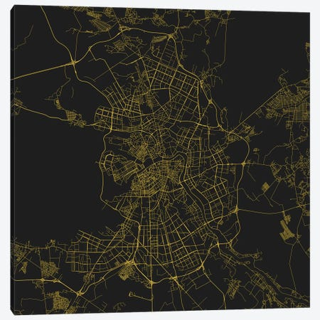 St. Petersburg Urban Roadway Map (Yellow) Canvas Print #ESV357} by Urbanmap Canvas Art