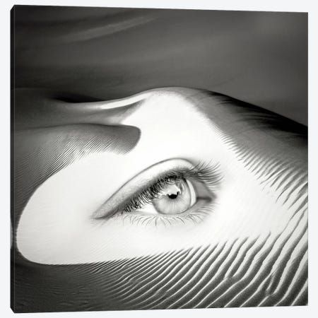 Untrue Canvas Print #ESV35} by Evgenij Soloviev Canvas Art
