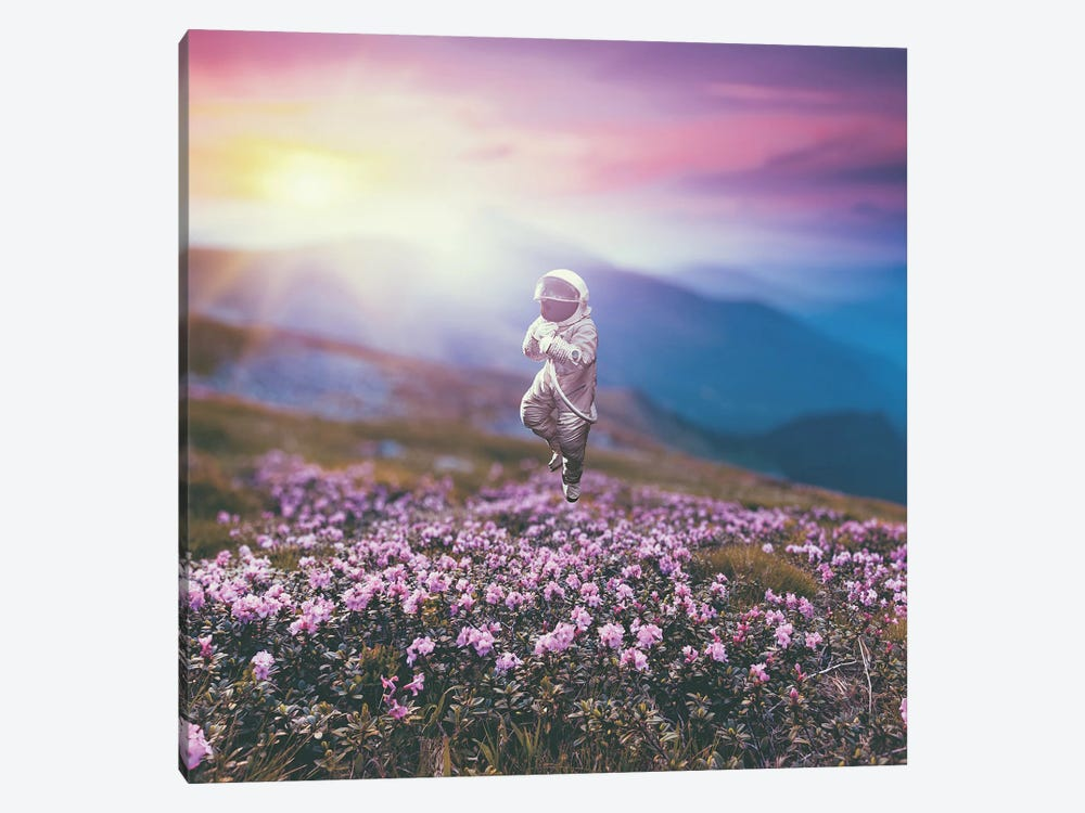 Astronaut's Dream by Evgenij Soloviev 1-piece Canvas Print