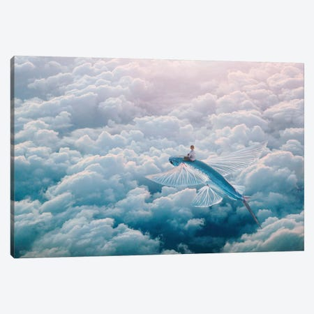 Plane Canvas Print #ESV468} by Evgenij Soloviev Canvas Art Print