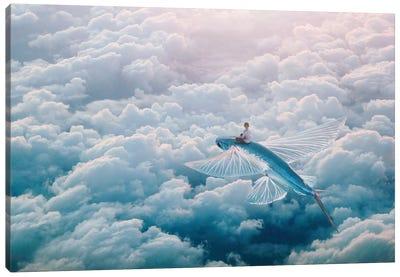 Plane Canvas Art Print