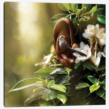 Sound Of Nature Canvas Print #ESV472} by Evgenij Soloviev Canvas Artwork