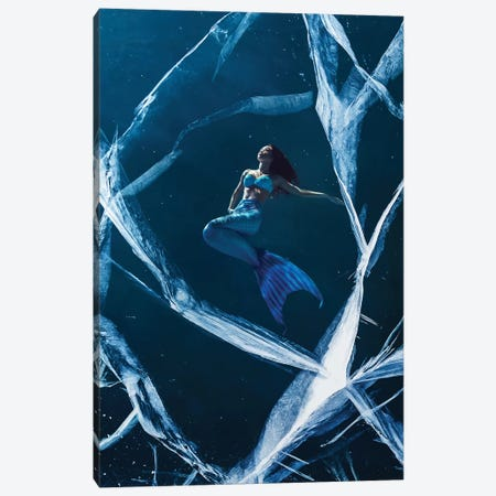 Ice Mermaid Canvas Print #ESV484} by Evgenij Soloviev Canvas Art