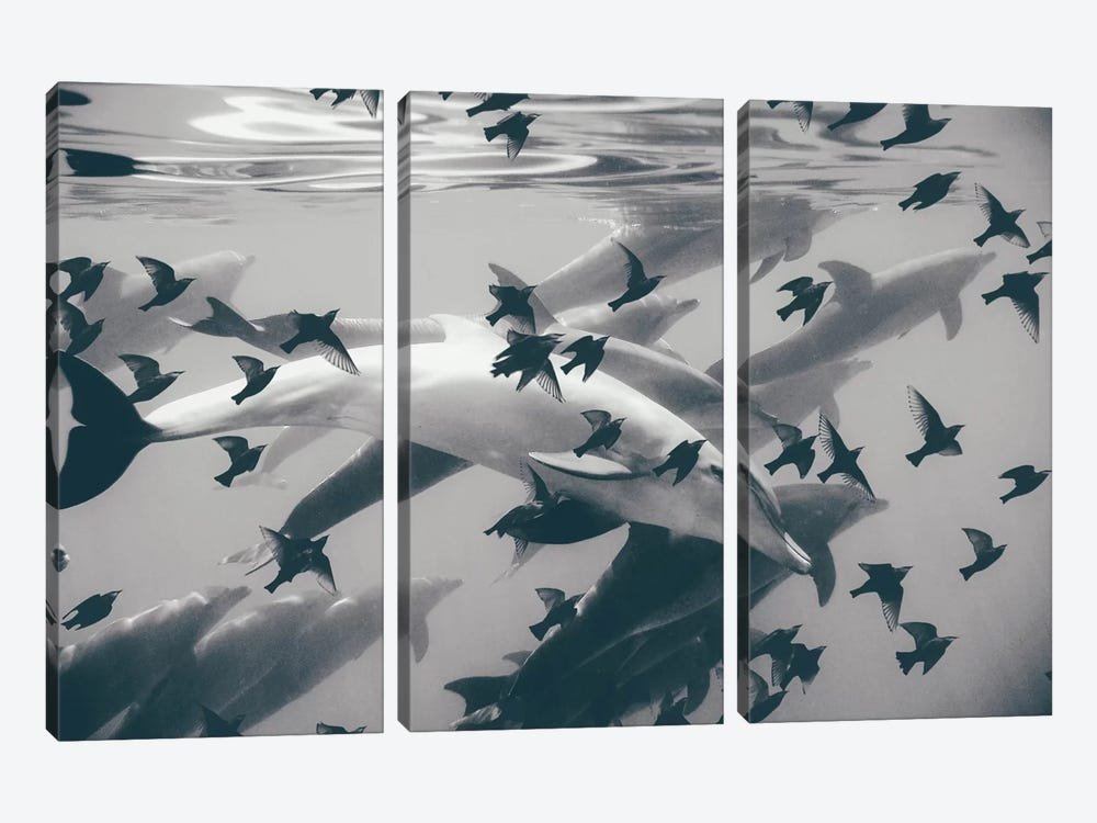 Found Out by Evgenij Soloviev 3-piece Canvas Wall Art
