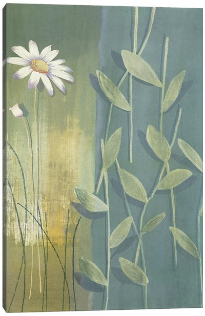 Composition avec marguerite Canvas Art Print