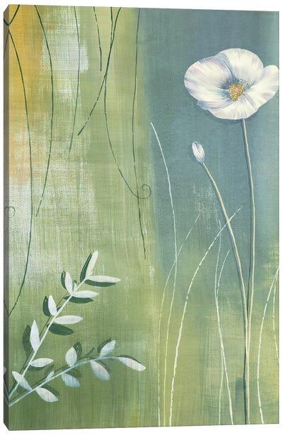 Composition avec coquelicot Canvas Art Print