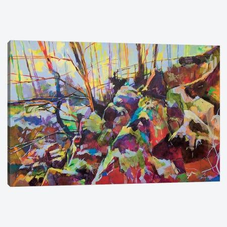 Scowles Canvas Print #ETN11} by Doug Eaton Canvas Art