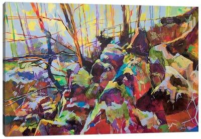 Scowles Canvas Art Print