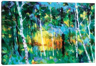 Birch Near Edge End Canvas Art Print
