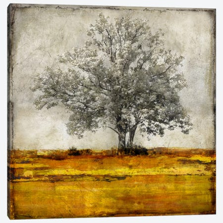 Majestic - Amber Canvas Print #ETU5} by Eric Turner Canvas Wall Art