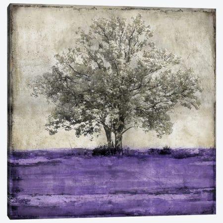 Majestic - Amethyst Canvas Print #ETU6} by Eric Turner Canvas Art