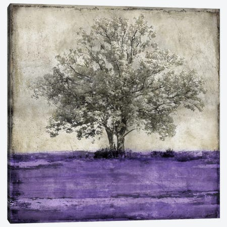 Majestic - Amethyst Canvas Print #ETU6} by Eric Turner Canvas Art