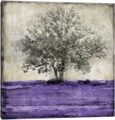 Majestic - Amethyst Canvas Art Print