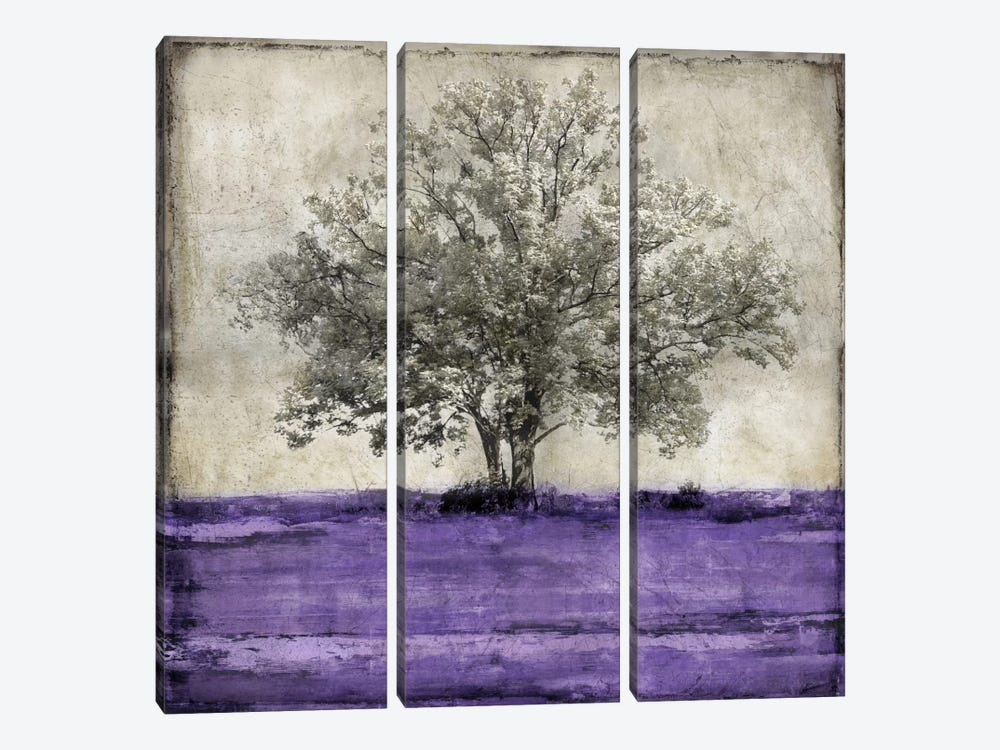 Majestic - Amethyst by Eric Turner 3-piece Canvas Art