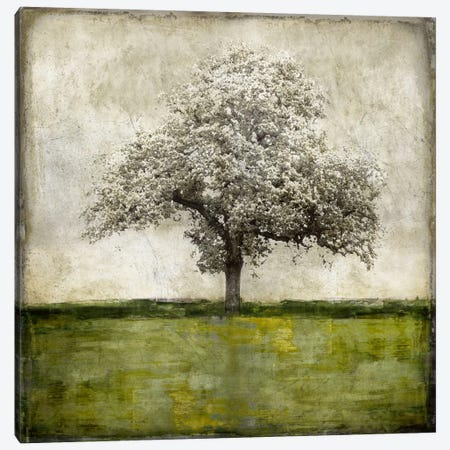 Majestic - Green Canvas Print #ETU8} by Eric Turner Art Print