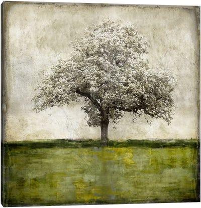 Majestic - Green Canvas Art Print