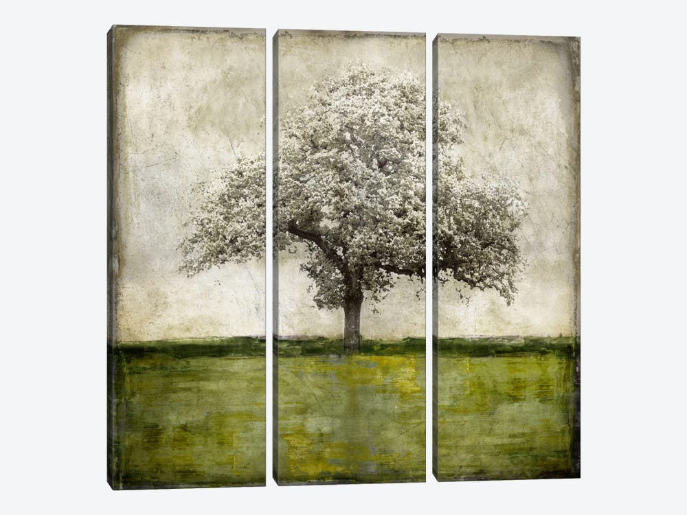 Majestic - Green by Eric Turner 3-piece Canvas Artwork