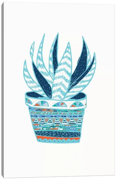 Succulent, Blue Canvas Art Print