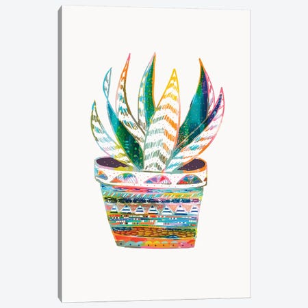 Succulent, Rainbow Canvas Print #ETV108} by ETTAVEE Canvas Artwork