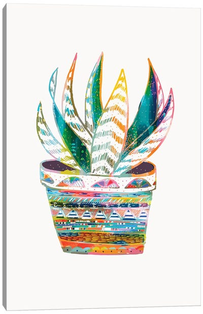 Succulent, Rainbow Canvas Art Print