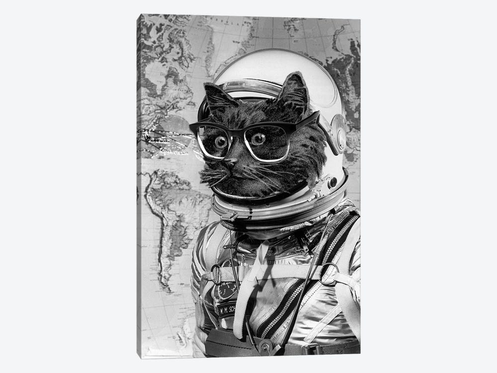 Eugenia Loli - Space Kitten by Eugenia Loli 1-piece Canvas Art