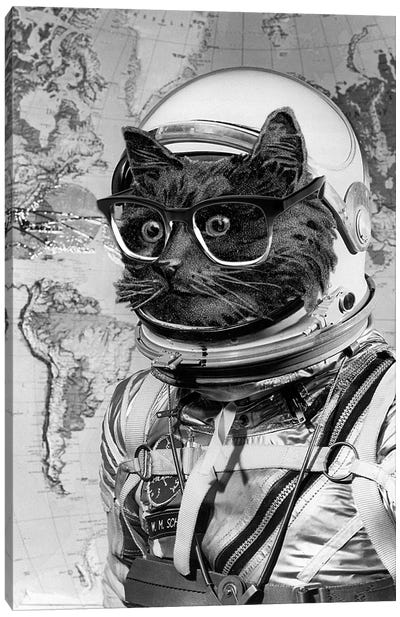 Eugenia Loli - Space Kitten Canvas Art Print
