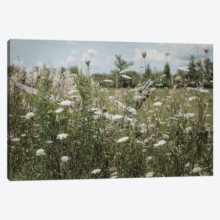 Sun Drenched III Canvas Print #EUR17} by Elizabeth Urquhart Canvas Artwork