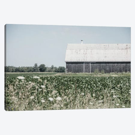 Weathered I Canvas Print #EUR19} by Elizabeth Urquhart Canvas Print