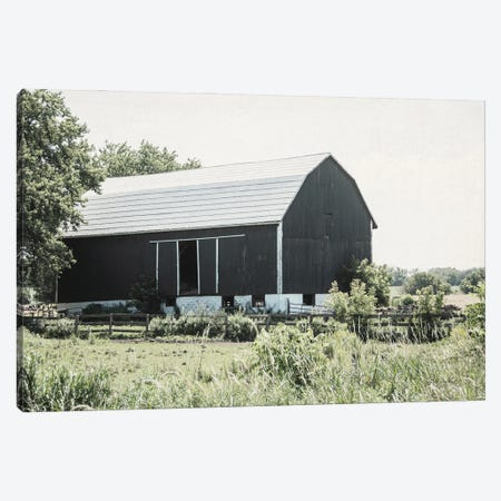 Weathered II Canvas Print #EUR20} by Elizabeth Urquhart Canvas Art