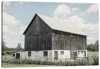 Weathered IV Canvas Art Print