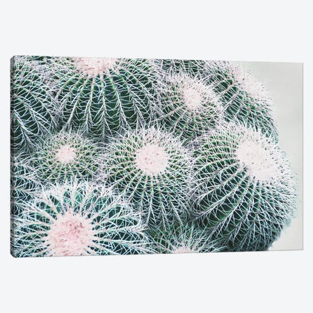 Green Crush III Canvas Print #EUR25} by Elizabeth Urquhart Art Print