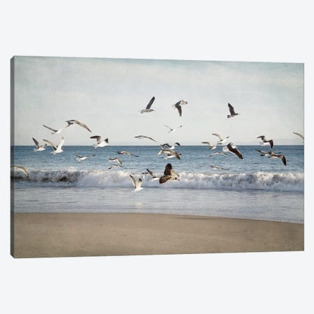 Soar II Canvas Print #EUR34} by Elizabeth Urquhart Canvas Art